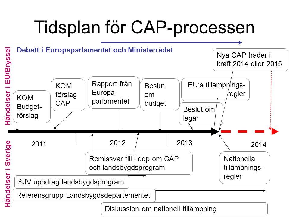 Tidsplan för CAP-processen