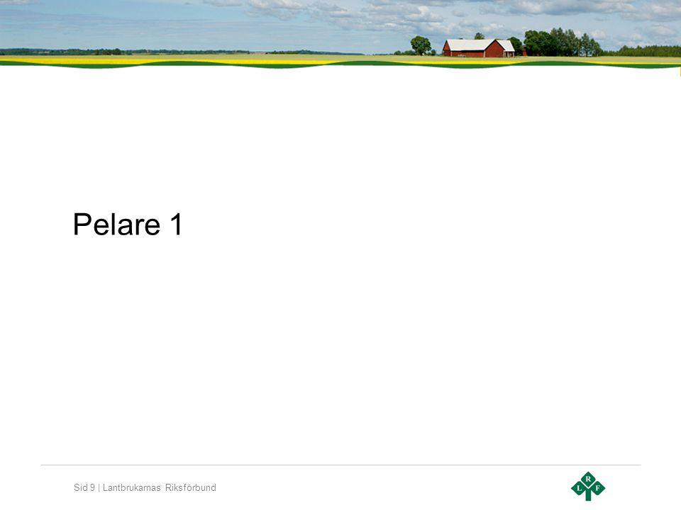 Pelare 1