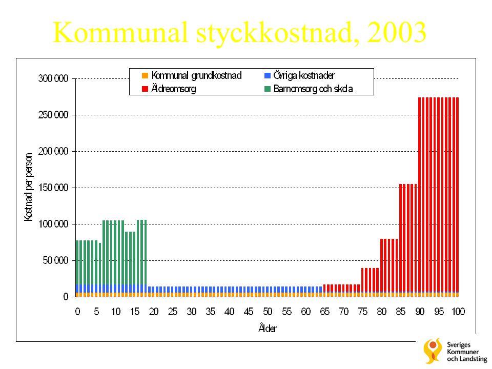 Kommunal styckkostnad, 2003