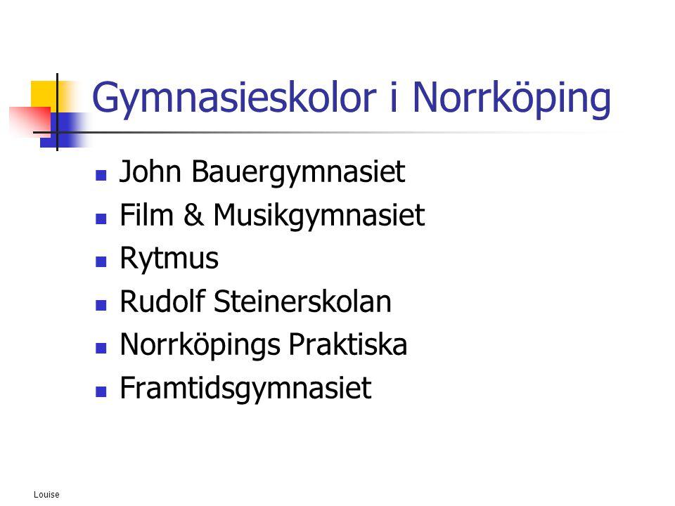 Gymnasieskolor i Norrköping