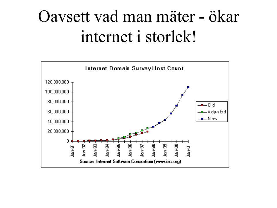 Oavsett vad man mäter - ökar internet i storlek!