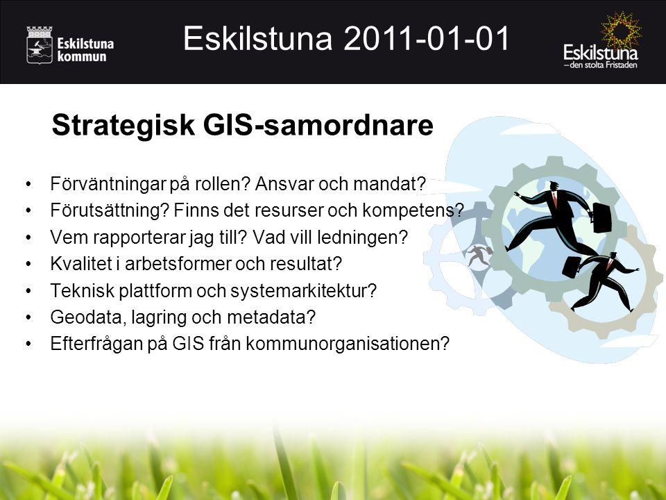 Strategisk GIS-samordnare
