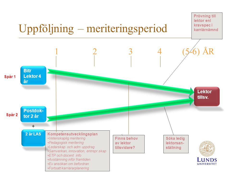 Uppföljning – meriteringsperiod