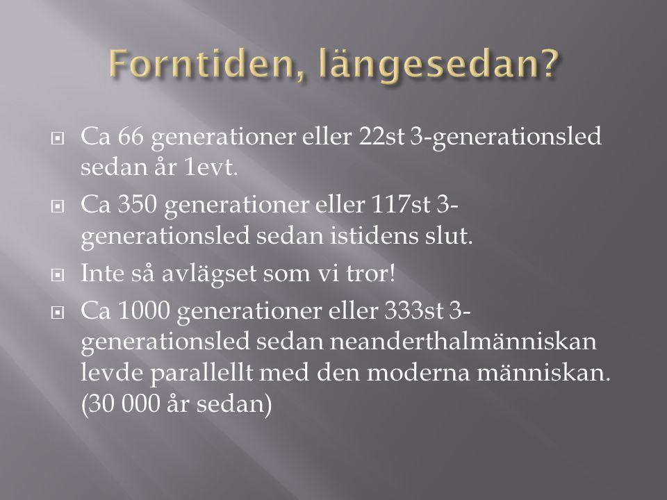 Forntiden, längesedan Ca 66 generationer eller 22st 3-generationsled sedan år 1evt.