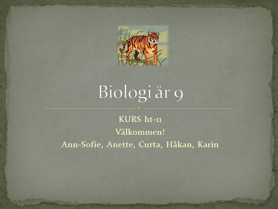 KURS ht-11 Välkommen! Ann-Sofie, Anette, Curta, Håkan, Karin