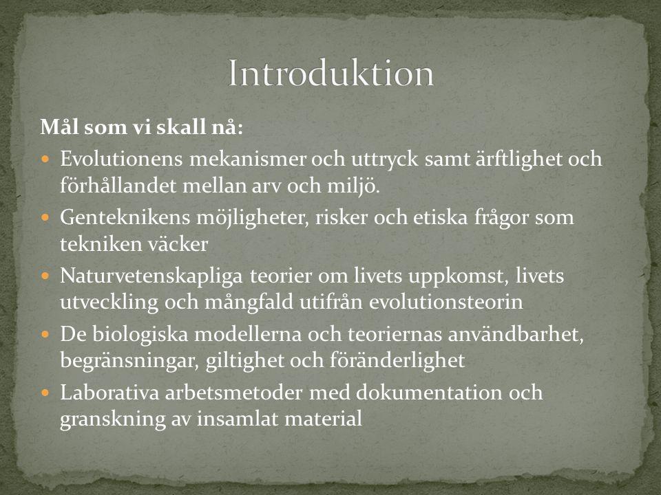 Introduktion Mål som vi skall nå: