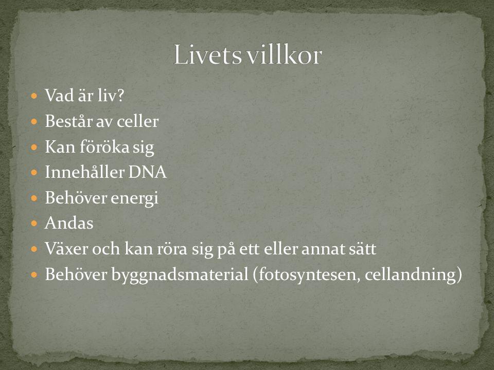 Livets villkor Vad är liv Består av celler Kan föröka sig