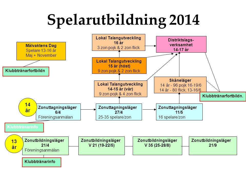 Spelarutbildning 2014 14 år 13 år Lokal Talangutveckling 16 år