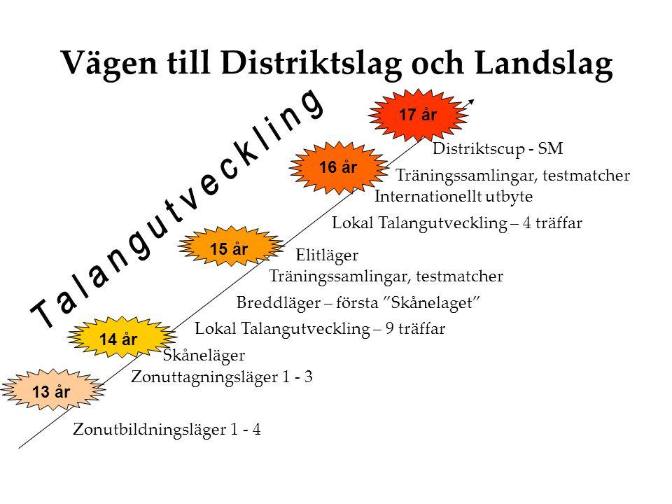 Vägen till Distriktslag och Landslag