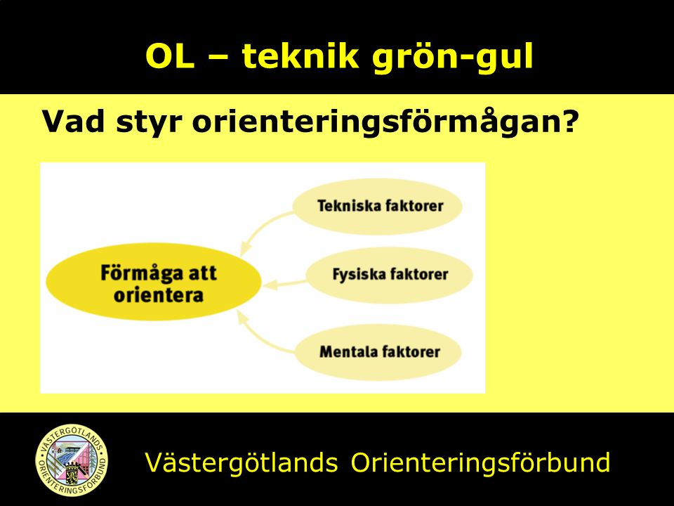 OL – teknik grön-gul Vad styr orienteringsförmågan