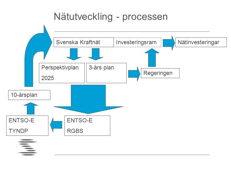 Nätutveckling - processen