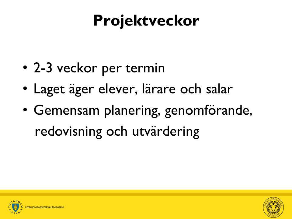 Projektveckor 2-3 veckor per termin