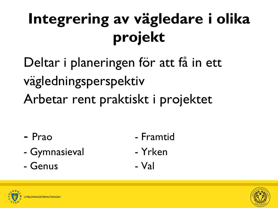 Integrering av vägledare i olika projekt