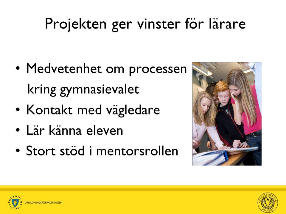 Projekten ger vinster för lärare