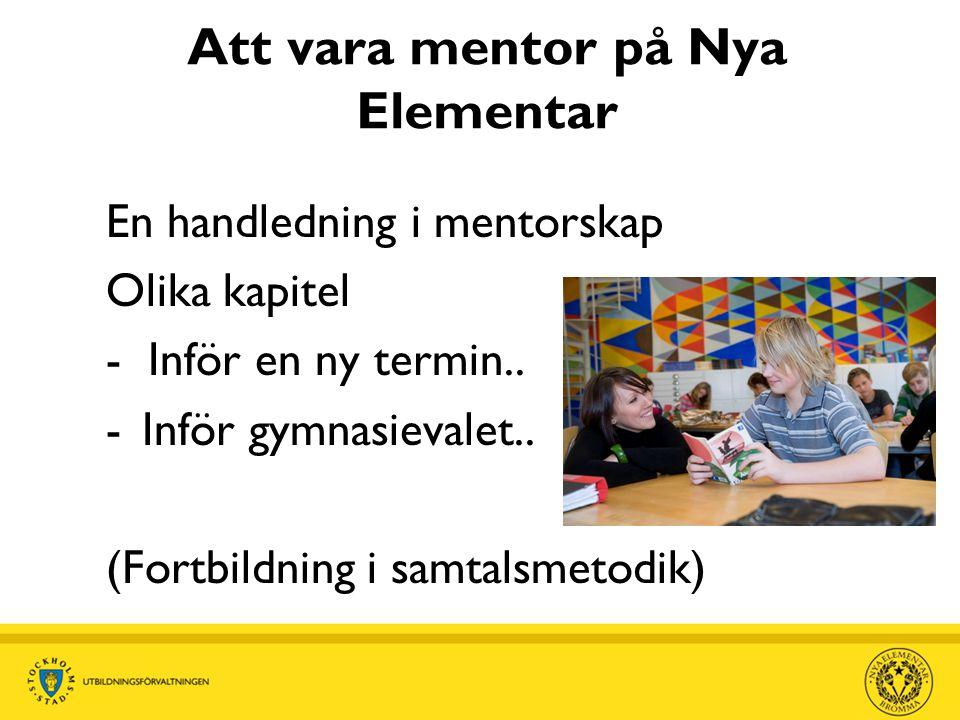 Att vara mentor på Nya Elementar