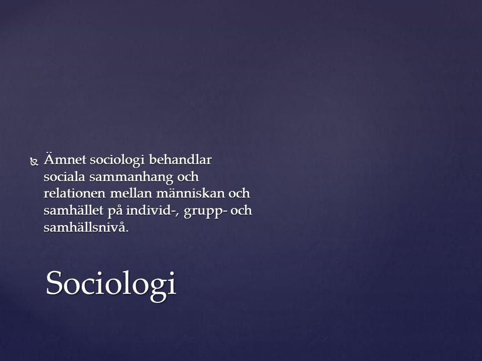 Ämnet sociologi behandlar sociala sammanhang och relationen mellan människan och samhället på individ-, grupp- och samhällsnivå.