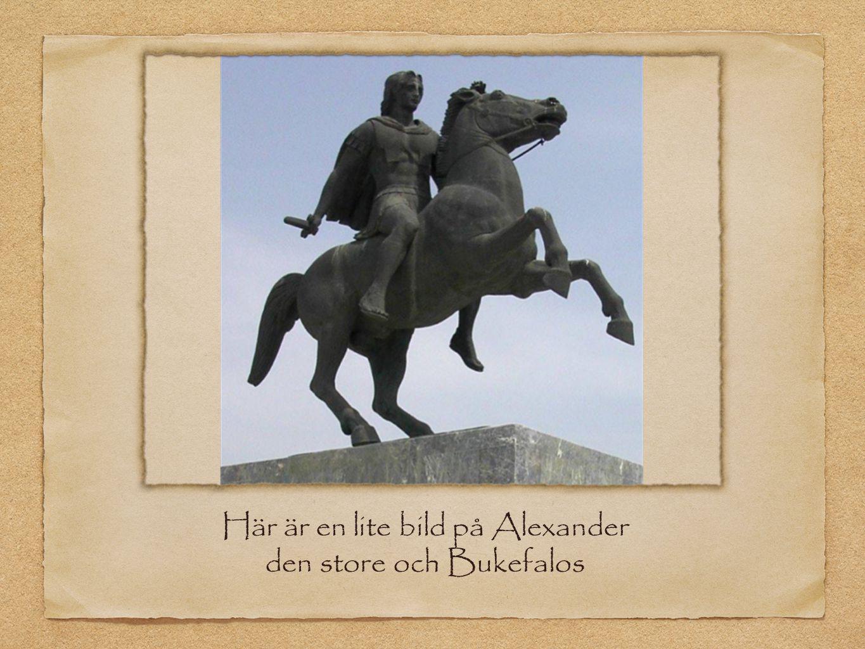 Här är en lite bild på Alexander den store och Bukefalos