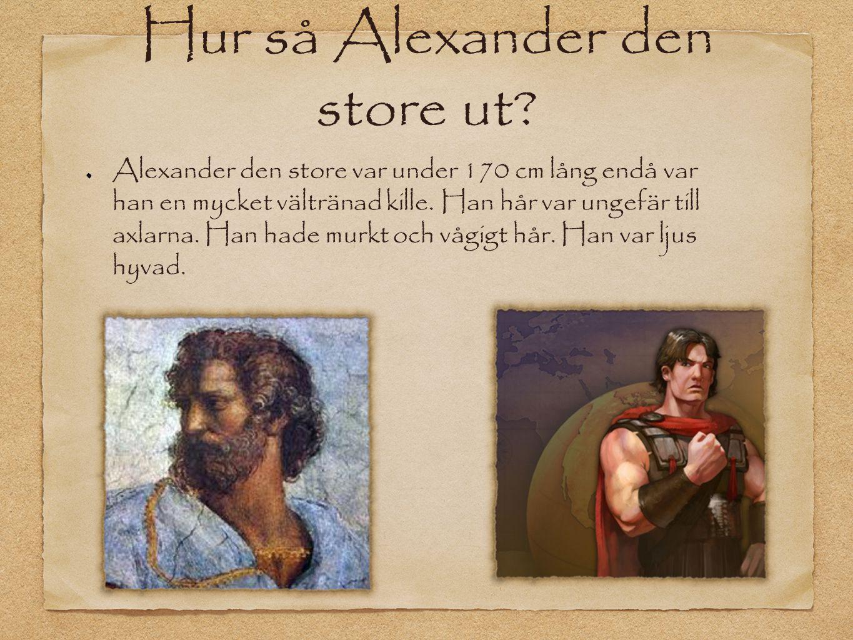 Hur så Alexander den store ut
