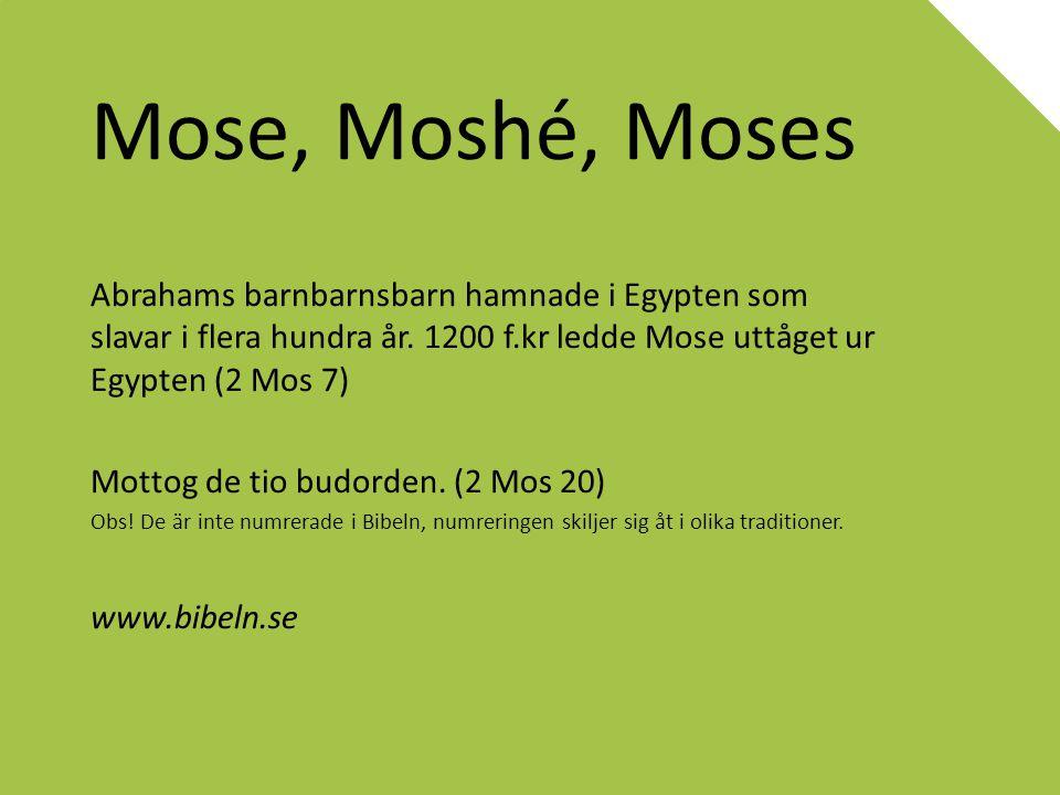 Mose, Moshé, Moses Abrahams barnbarnsbarn hamnade i Egypten som slavar i flera hundra år. 1200 f.kr ledde Mose uttåget ur Egypten (2 Mos 7)