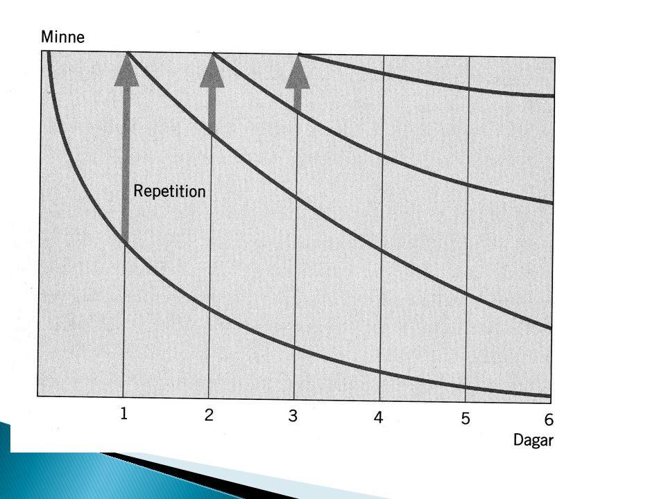 Lagring Repetition direkt och återkommande Verbalisera – återkoppla
