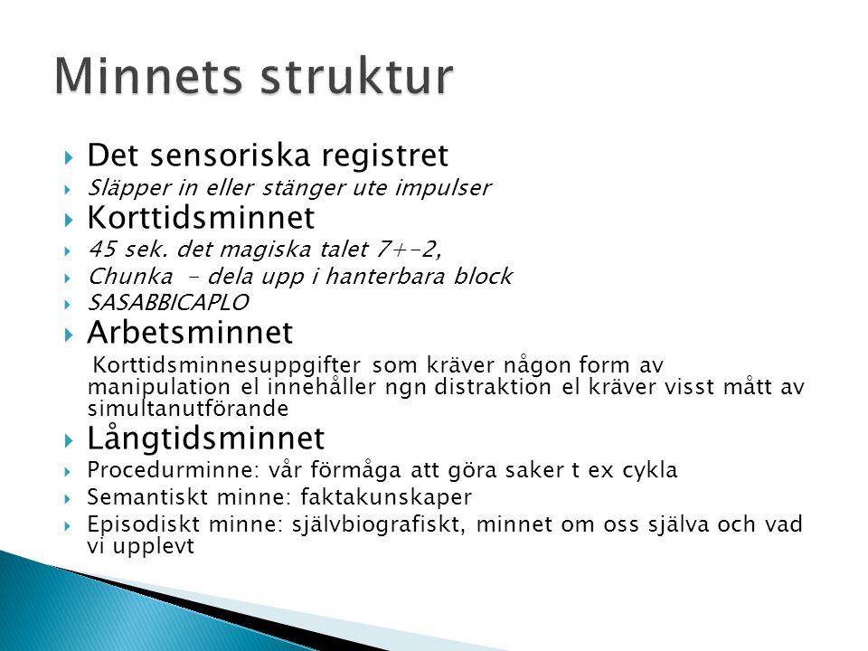 Minnets struktur Det sensoriska registret Korttidsminnet Arbetsminnet