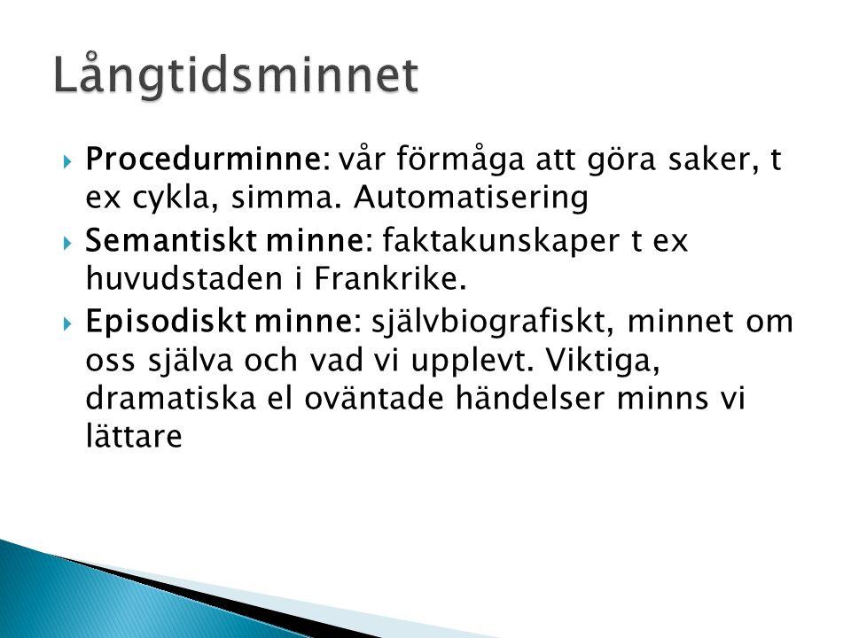 Långtidsminnet Procedurminne: vår förmåga att göra saker, t ex cykla, simma. Automatisering.