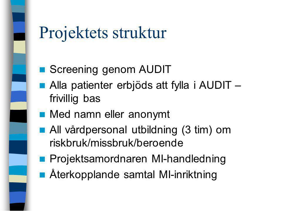 Projektets struktur Screening genom AUDIT