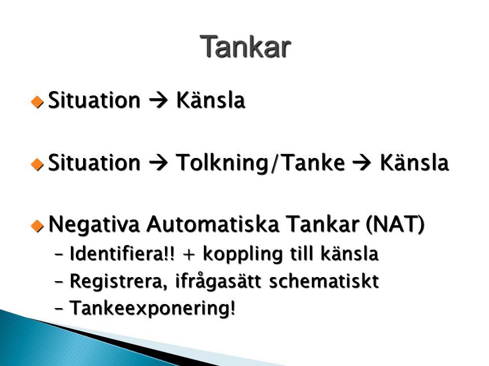 Tankar Situation  Känsla Situation  Tolkning/Tanke  Känsla