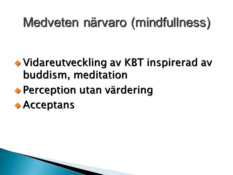 Medveten närvaro (mindfullness)