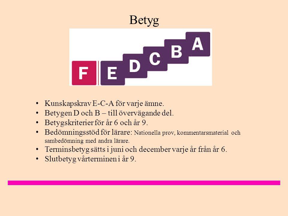 Betyg Kunskapskrav E-C-A för varje ämne.