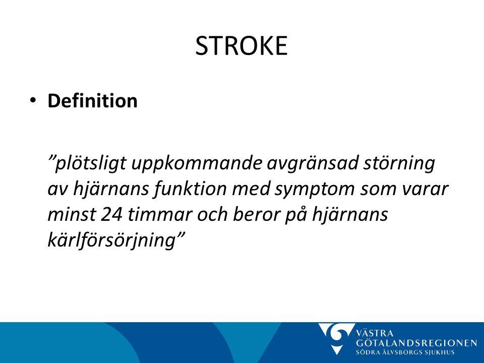 STROKE Definition.