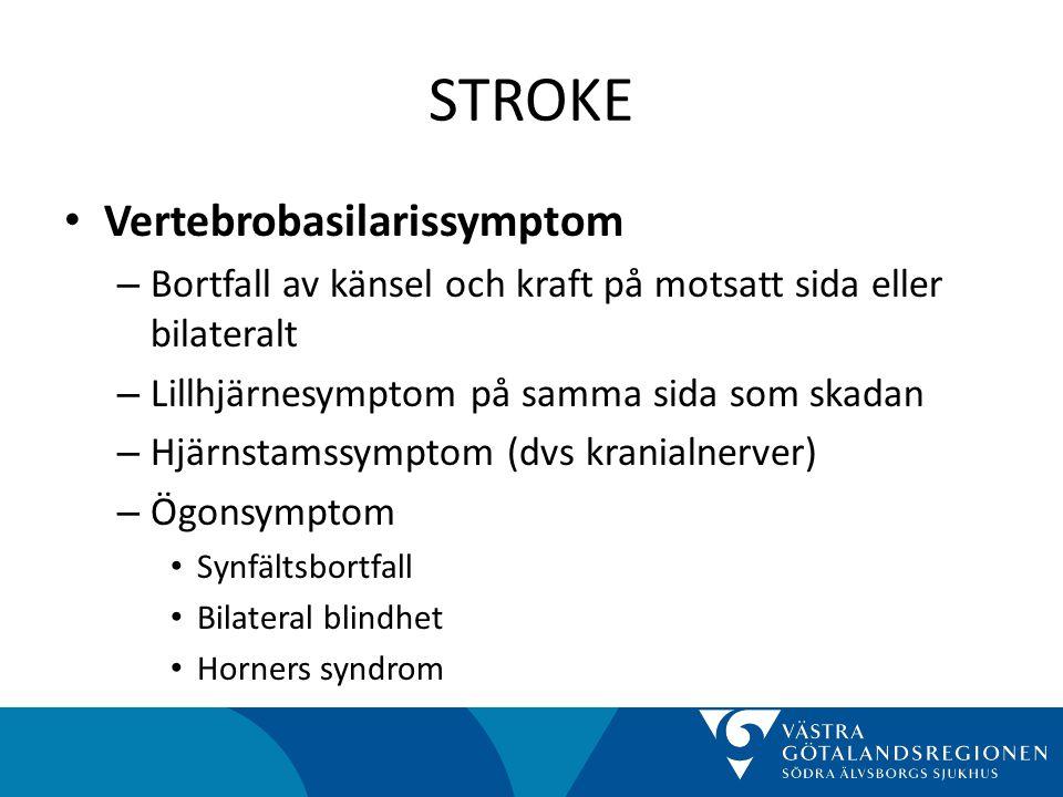 STROKE Vertebrobasilarissymptom