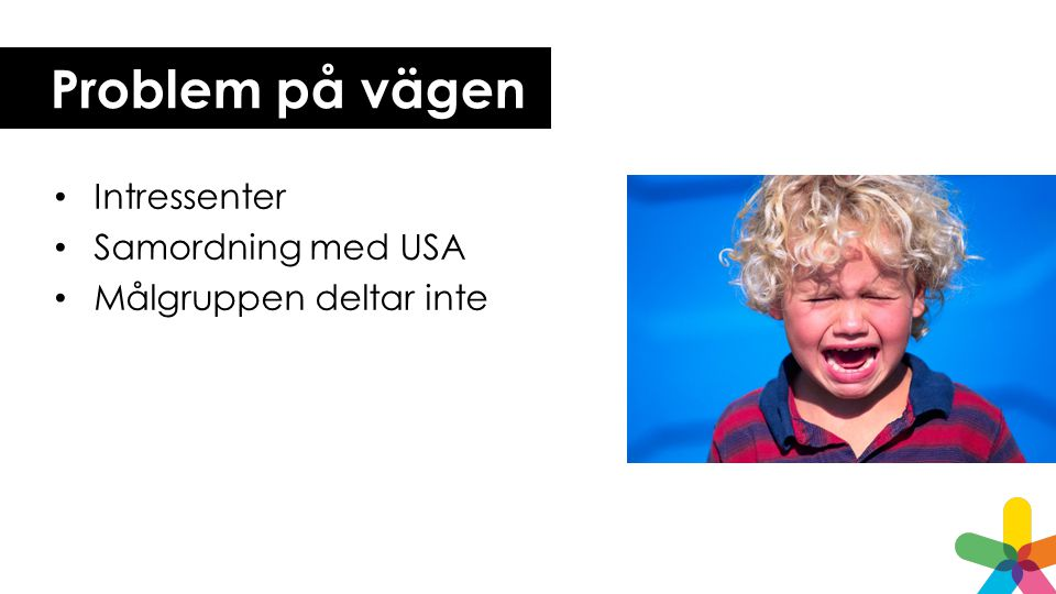 Problem på vägen Intressenter Samordning med USA