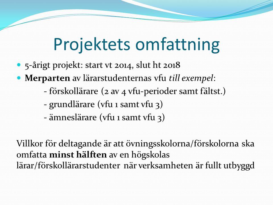 Projektets omfattning