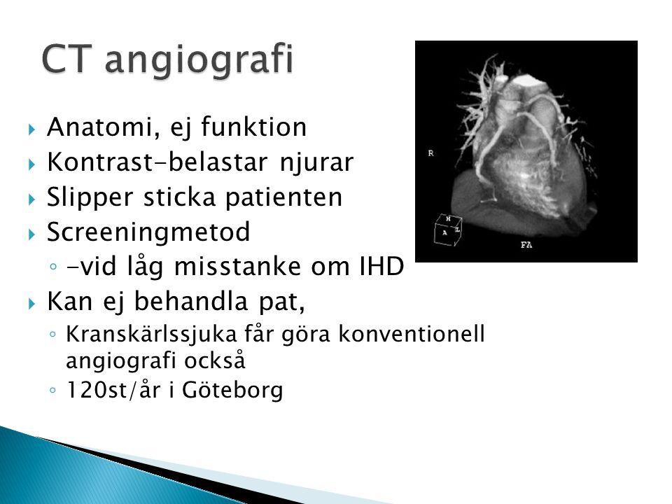 CT angiografi Anatomi, ej funktion Kontrast-belastar njurar