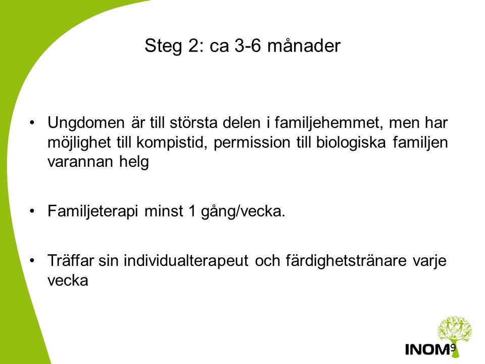 Steg 2: ca 3-6 månader