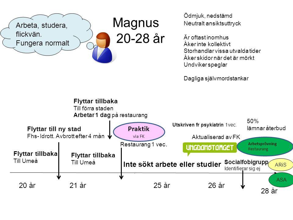 Magnus 20-28 år Arbeta, studera, flickvän. Fungera normalt Praktik