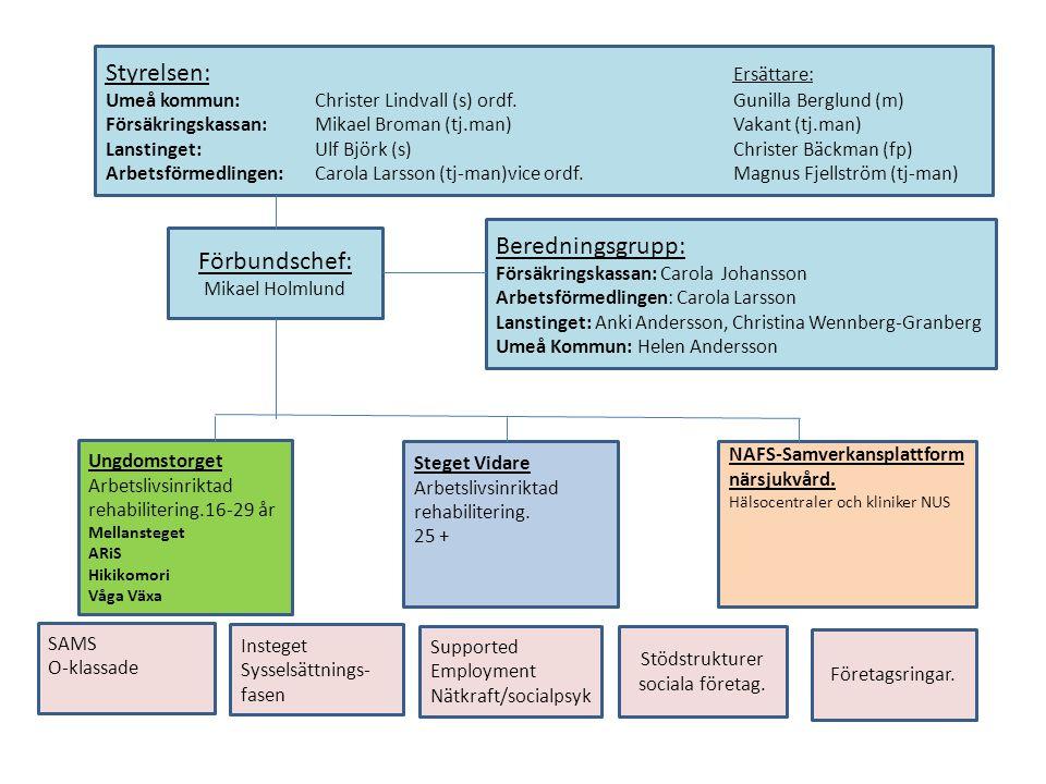 Stödstrukturer sociala företag.