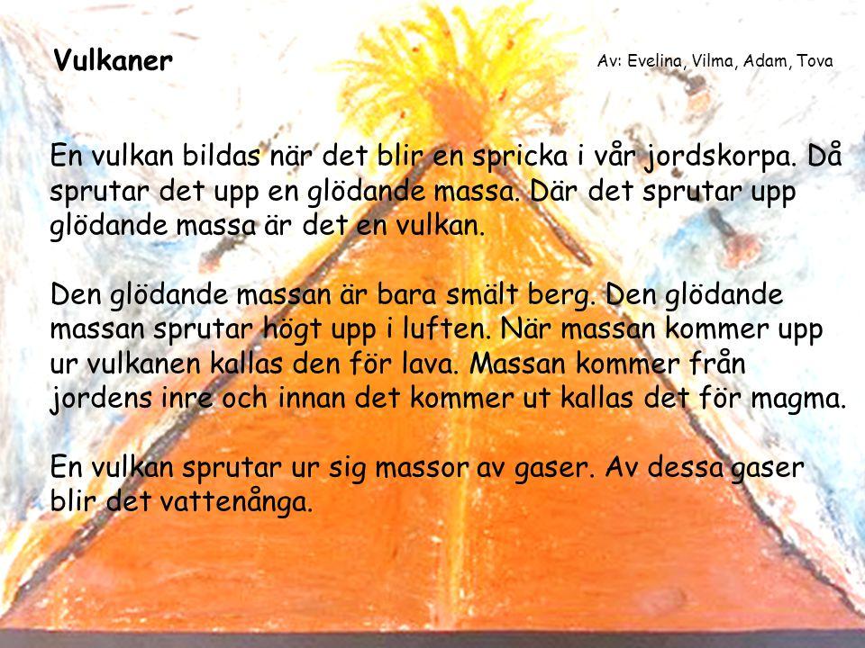 Vulkaner Av: Evelina, Vilma, Adam, Tova.