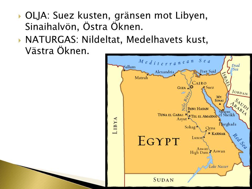 OLJA: Suez kusten, gränsen mot Libyen, Sinaihalvön, Östra Öknen.