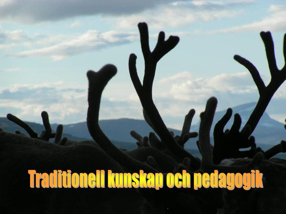 Traditionell kunskap och pedagogik