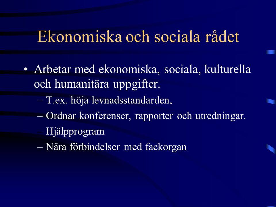 Ekonomiska och sociala rådet