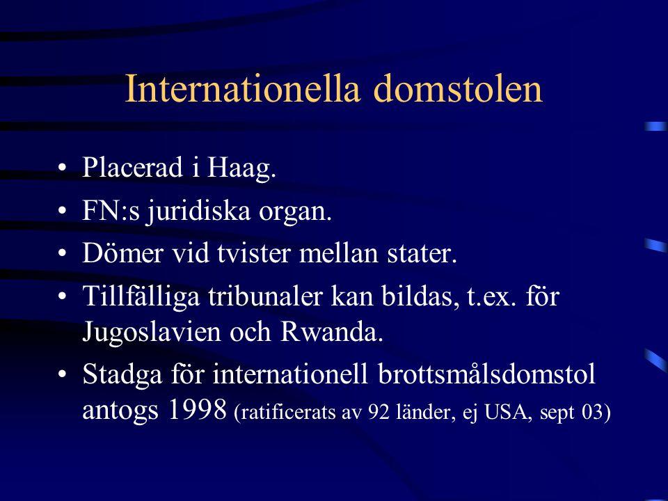 Internationella domstolen