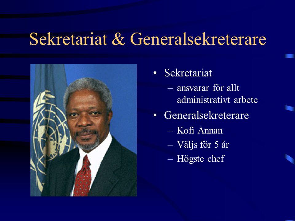 Sekretariat & Generalsekreterare