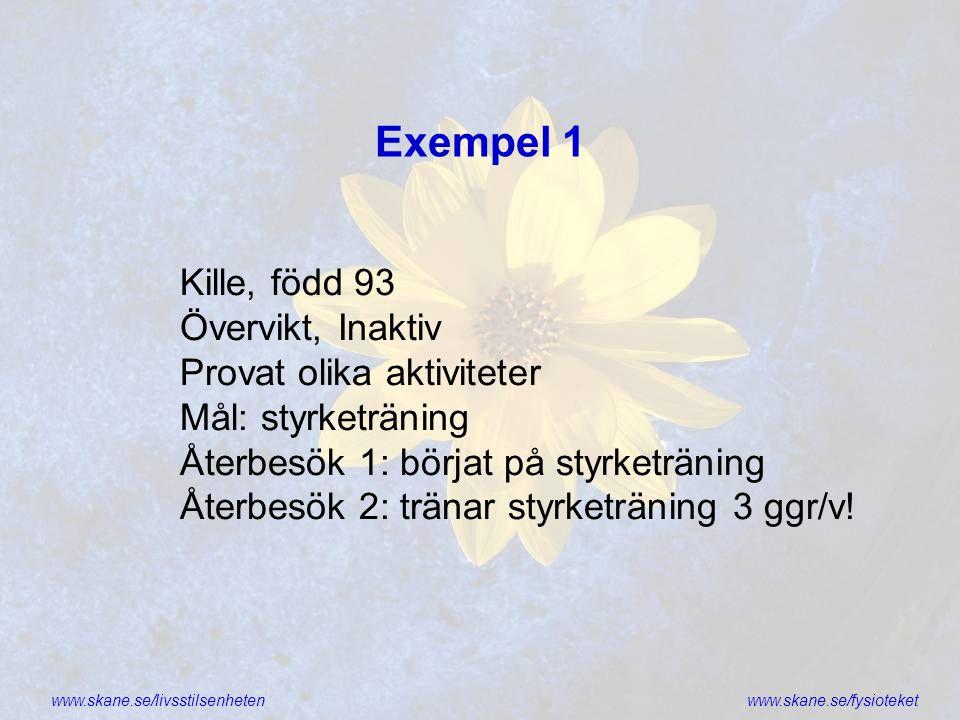 Exempel 1 Kille, född 93 Övervikt, Inaktiv Provat olika aktiviteter