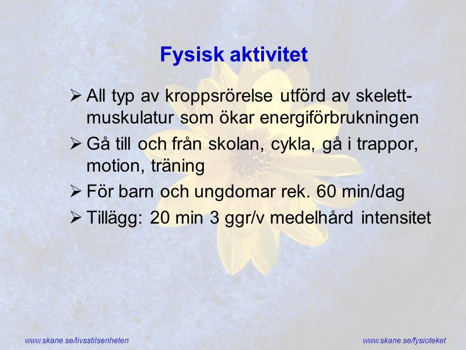 Fysisk aktivitet All typ av kroppsrörelse utförd av skelett-muskulatur som ökar energiförbrukningen.