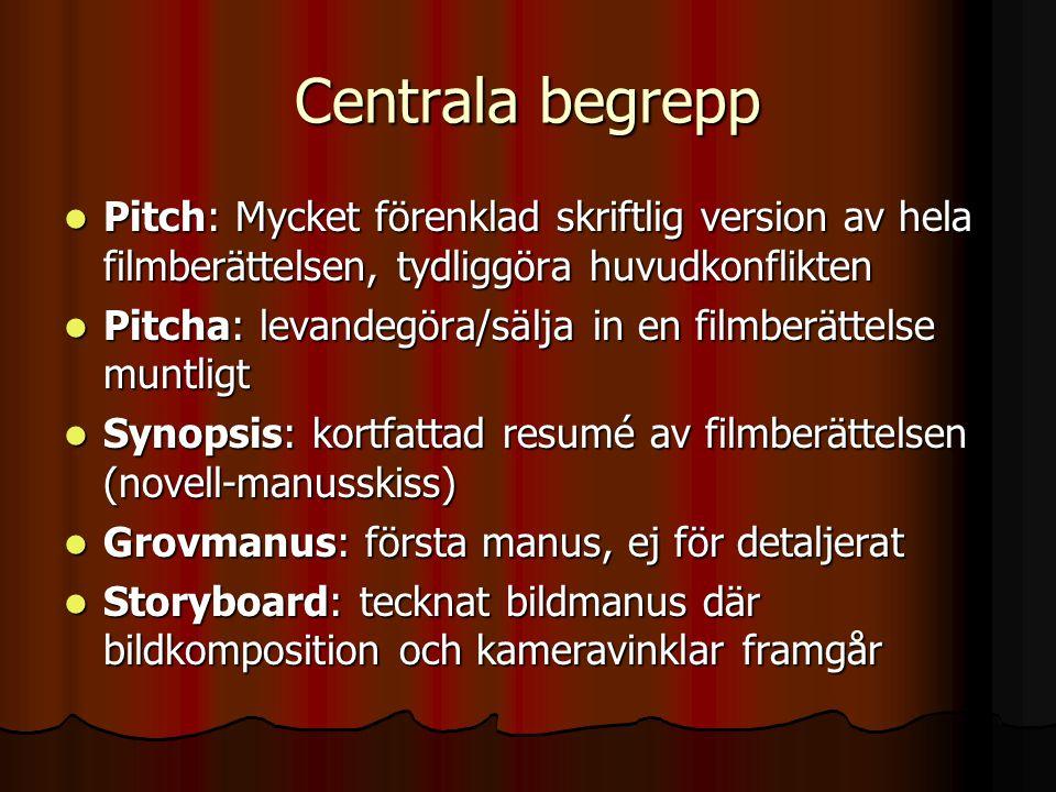 Centrala begrepp Pitch: Mycket förenklad skriftlig version av hela filmberättelsen, tydliggöra huvudkonflikten.