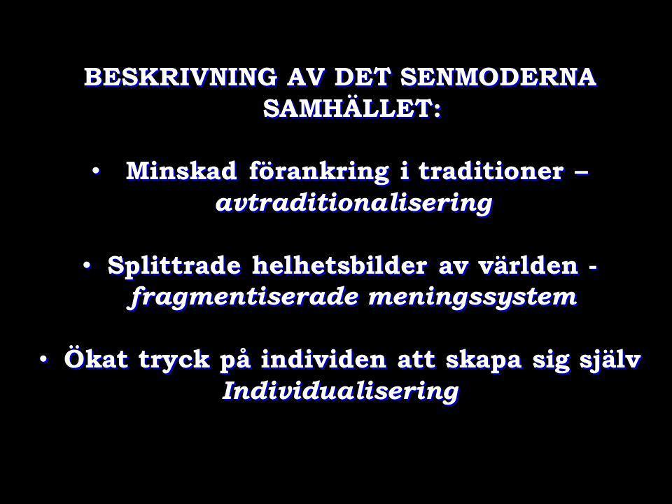 BESKRIVNING AV DET SENMODERNA SAMHÄLLET:
