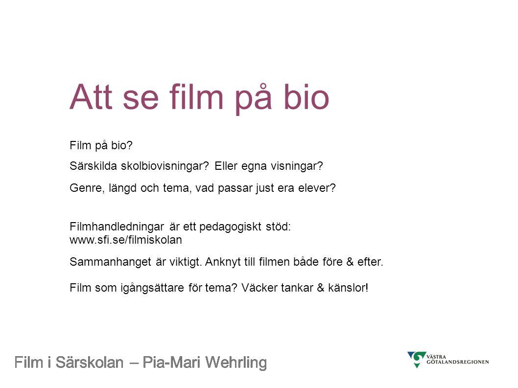Att se film på bio Film i Särskolan – Pia-Mari Wehrling