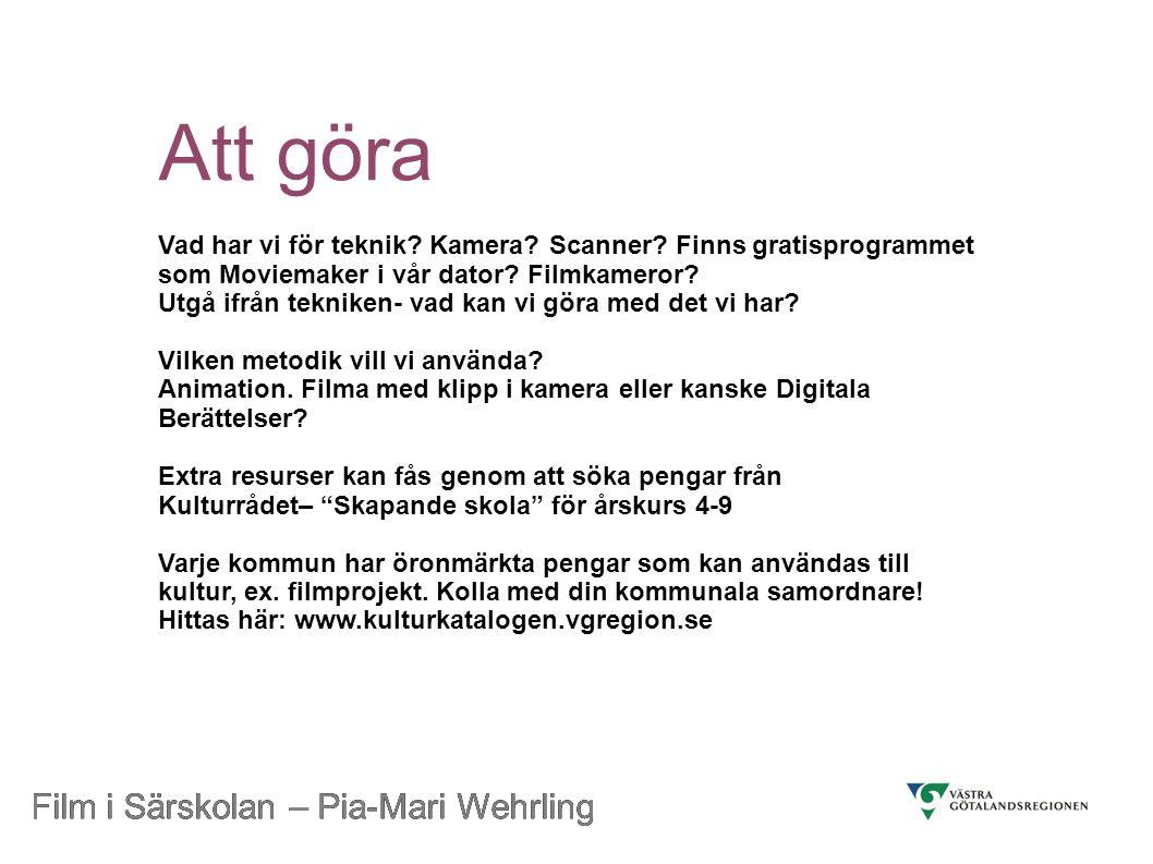 Att göra Film i Särskolan – Pia-Mari Wehrling